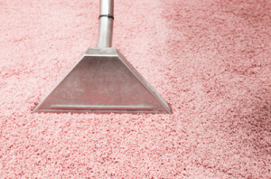 carpet upholstery cleaning johannesburg